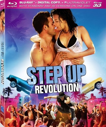 Step Up Revolution 2012 Dual Audio Hindi Eng BRRip 300mb