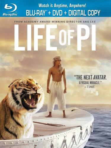 Life of Pi (2012) BRRip 480p 350MB