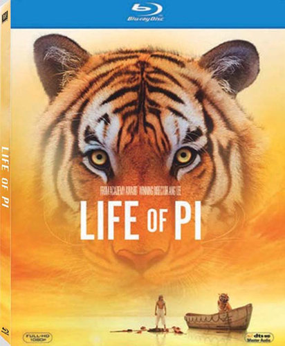 life of pi (2012) Dual Audio [Hindi English] BRRip 300MB
