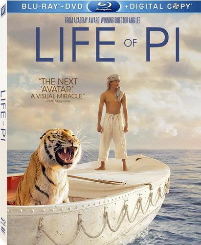 Life Of Pi (2012) Dual Audio Hindi Dubbed BRRip 720p