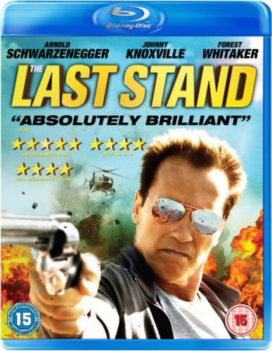 The Last Stand (2013) BRRip Download 350MB ESub